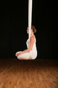 Aerial RESTORATIVE Workshop